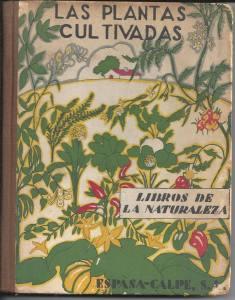 las-plantas-cultivadas-por-juan-dantin-cereceda-6334-MLA5052463833_092013-F